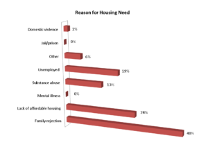 reason for lgbt youth housing need
